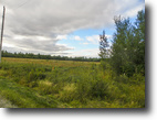 Ontario Hunting Land 32 Acres File 34- Build a hobby farm   $40,000.00