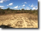 Mississippi Land 10 Acres Land For Sale in Starkville, MS