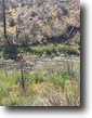 California Hunting Land 40 Acres California 40 ac. Gold MiningClaim w/River