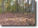 Tennessee Hunting Land 13 Acres 12.56 Ac.Pleasant Hill Cemetery Road