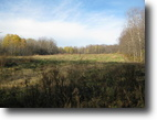 18 acres Summerhill NY borders Forest