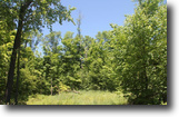 9+ Acre Land Tract - Walk to State Lands