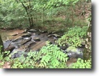 34 Wooded Acres in Decatur, TN.