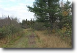 Michigan Hunting Land 39 Acres TBD Woods Rd., L'Anse, MLS# 1098865
