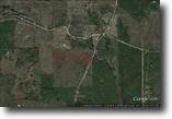 Mississippi Hunting Land 15 Acres Land For Sale in Sturgis, MS