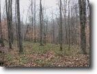 Tennessee Hunting Land 125 Acres 125 Ac. Creek, Mtn Views,Wildlife,No Restr