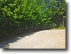 Recreational Home Site On 11.85 Acres In S