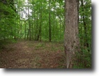 156.13 Acres Totally Wooded in Clay County