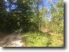 48 Acres In Hart County, KY