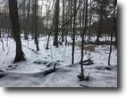 56 acres Timberland in Nanticoke NY Pond