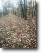 Mississippi Hunting Land 37 Acres Land For Sale: Osborn Rd. Starkville, MS