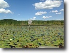 Ontario Hunting Land 212 Acres Duck Hunting Marsh - Beaver River Scugog
