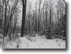 Michigan Hunting Land 280 Acres TBD Off North Lane, Sagola, Mls# 1099211