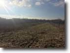 9 acres in Green County, KY