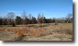 Mississippi Land 30 Acres Land For Sale-Blackjack Rd. Starkville, MS
