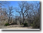 Texas Ranch Land 260 Acres 1728 Sweet Springs Rd