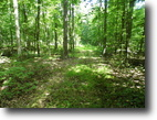 Paupack Township - 4.59 Acres