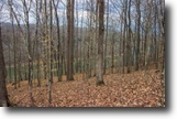 63.81 Acres Lake View in Dekalb County