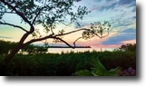 Florida Waterfront 9 Square Feet Spectacular Open Gulf View Lot