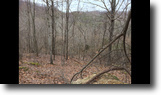 Kentucky Hunting Land 180 Acres Sale Pending 180+/-ac ElliottCo.KY $79,900