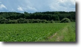 Michigan Farm Land 17 Acres Build Your Dream Home