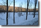 30 acres borders State Forest Richford NY