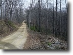 West Virginia Farm Land 88 Acres 000 Kelly Ridge Road  MLS 103319