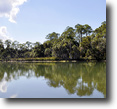 Florida Land 38 Acres Weeki Wachee Waterfront Uplands