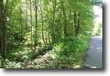 Michigan Hunting Land 11 Acres TBD Chief Lake Rd., MLS# 1099791