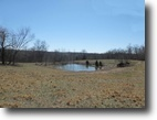 Tennessee Farm Land 159 Acres 159 Ac, air strip, 30 min. to Nashville