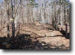 58.01 Acres Hunting Property, Wooded