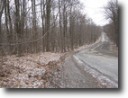 New York Hunting Land 10 Acres 9 Ac Building Lot borders State Forest