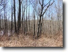 2.4 Acre Wooded Building Tract ~ Views!!!