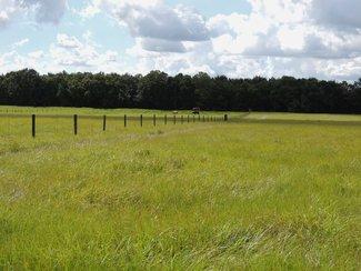 Weed free pastures.