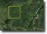 File 44- priced to sell quick 39.5 acres