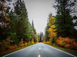 Rush Creek Road - Claim road in the fall