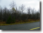File 46- prime homestead land 32 acres