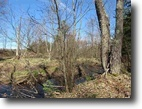 Michigan Waterfront 31 Acres TBD McCallum Lane, Mls # 1100173