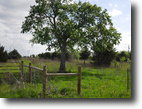 Country Property on 38.905 Acres!