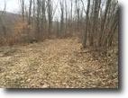 7 acres near Olean NY Hunting Land
