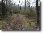 15.06 acres Totally Wooded in Clay Co.