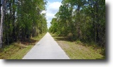 Florida Land 227 Acres Green Swamp East
