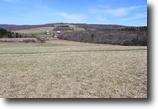 82 acres Farmland near Ithaca NY Organic