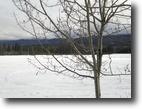 340 acres farmland near Dawson City, YT