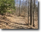 10 acre Lot Binghamton NY White Birch Lake