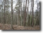 Virginia Land 7 Acres Wooded Land in Riner VA for Sale!
