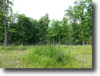 40 Beautiful Gently Rolling Wooded Acres