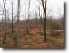 25 acres Malone NY Hunting Land