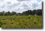 Florida Land 40 Acres Wesley Chapel Residential Development