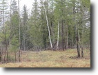 Michigan Hunting Land 22 Acres Tbd M-28 Highway, Kenton Mls#  1101168